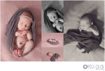 Lansdale Newborn Photographer